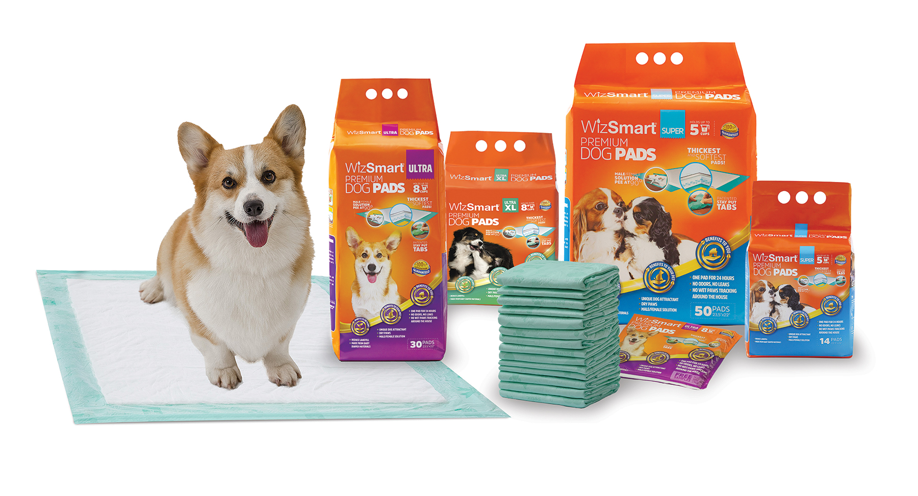 Southeast Pet partnership expands Petix's Southeast US Distribution