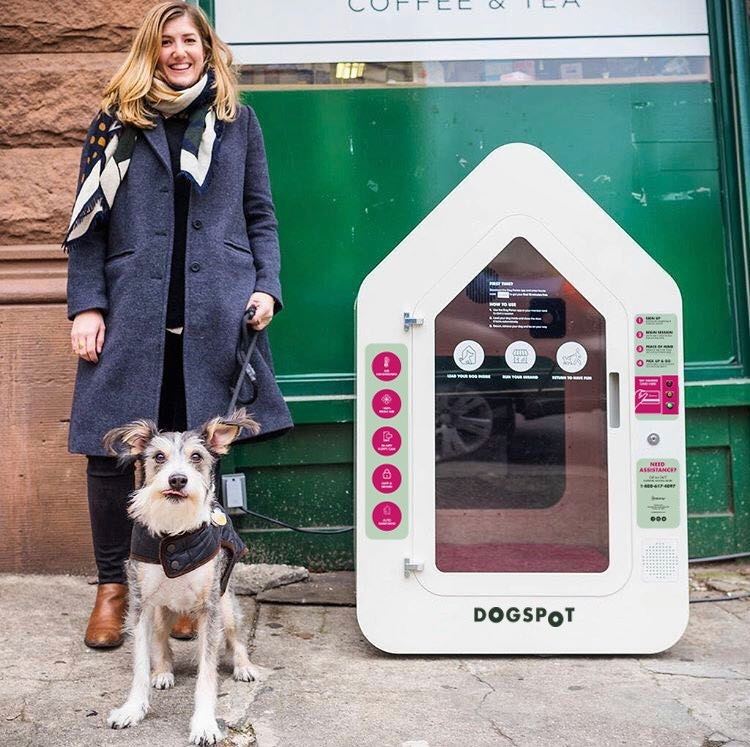 QFC-DogSpot partnership offers convenience for dog-owning customers in Seattle