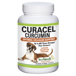 An image of Terry Naturally Animal Health, a EuroPharma brand - Curacel Curcumin