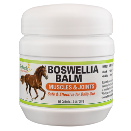 An image of Terry Naturally Animal Health, a EuroPharma brand - Boswellia Balm