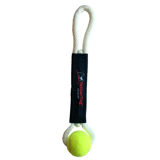 An image of Tether Tug - Ball Toy Plus