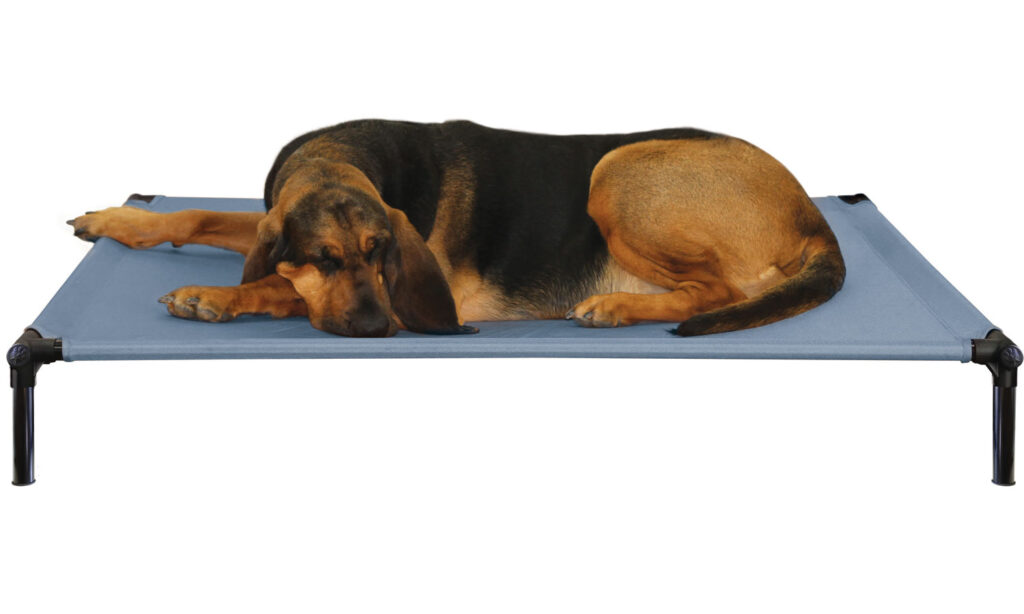 An image of Starmark Pet Products - DogZone Pro-Training Bed X-Large Sky Blue