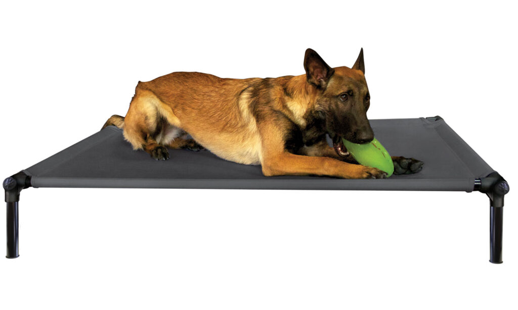 An image of Starmark Pet Products - DogZone Pro-Training Bed Large Charcoal