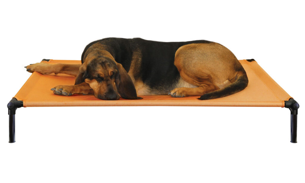 An image of Starmark Pet Products - DogZone Pro-Training Bed X-Large Sunset Gold