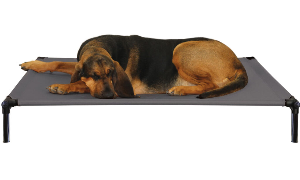 An image of Starmark Pet Products - DogZone Pro-Training Bed X-Large Charcoal