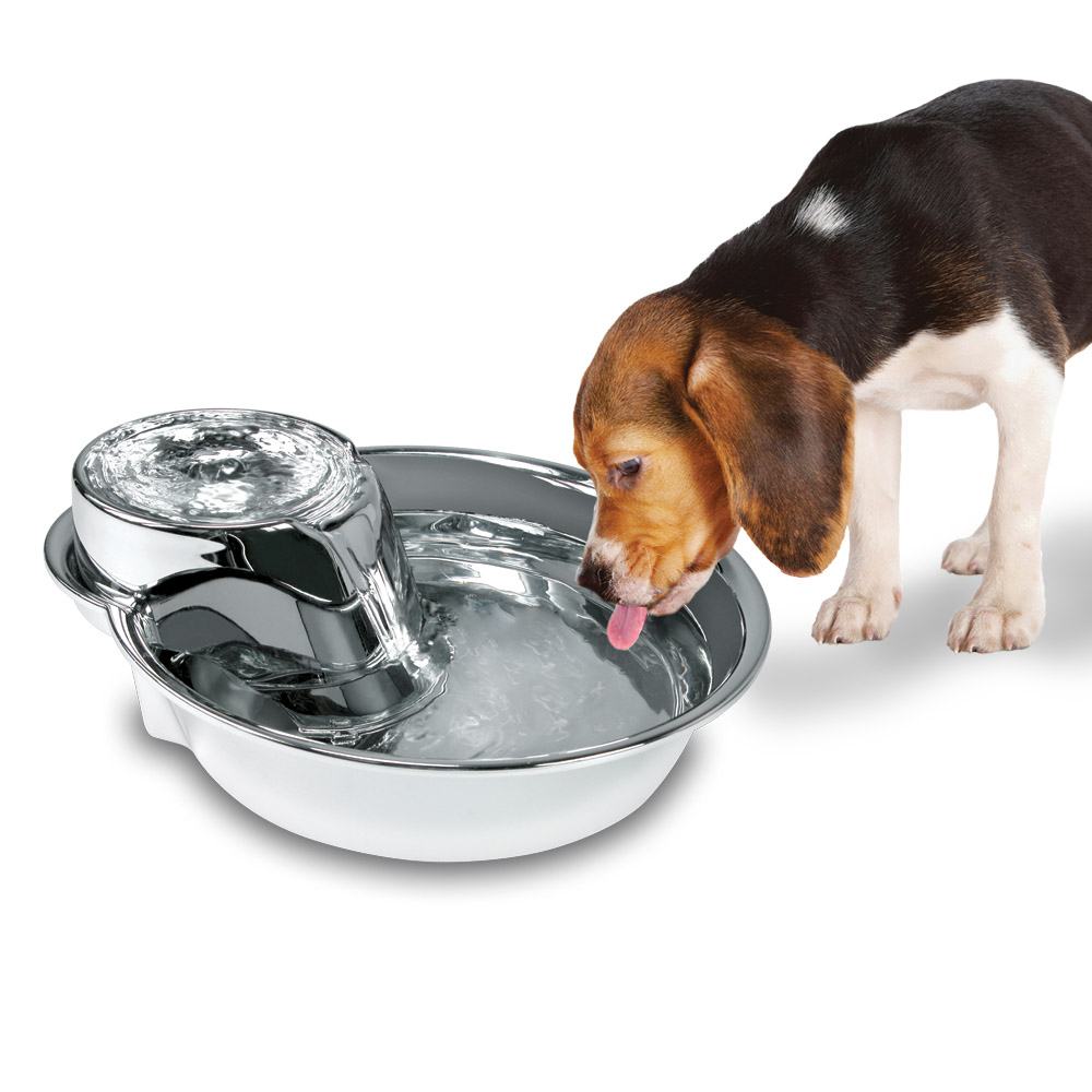 An image of Pioneer Pet Products, LLC. - Big Max™ Stainless Steel Drinking Fountain