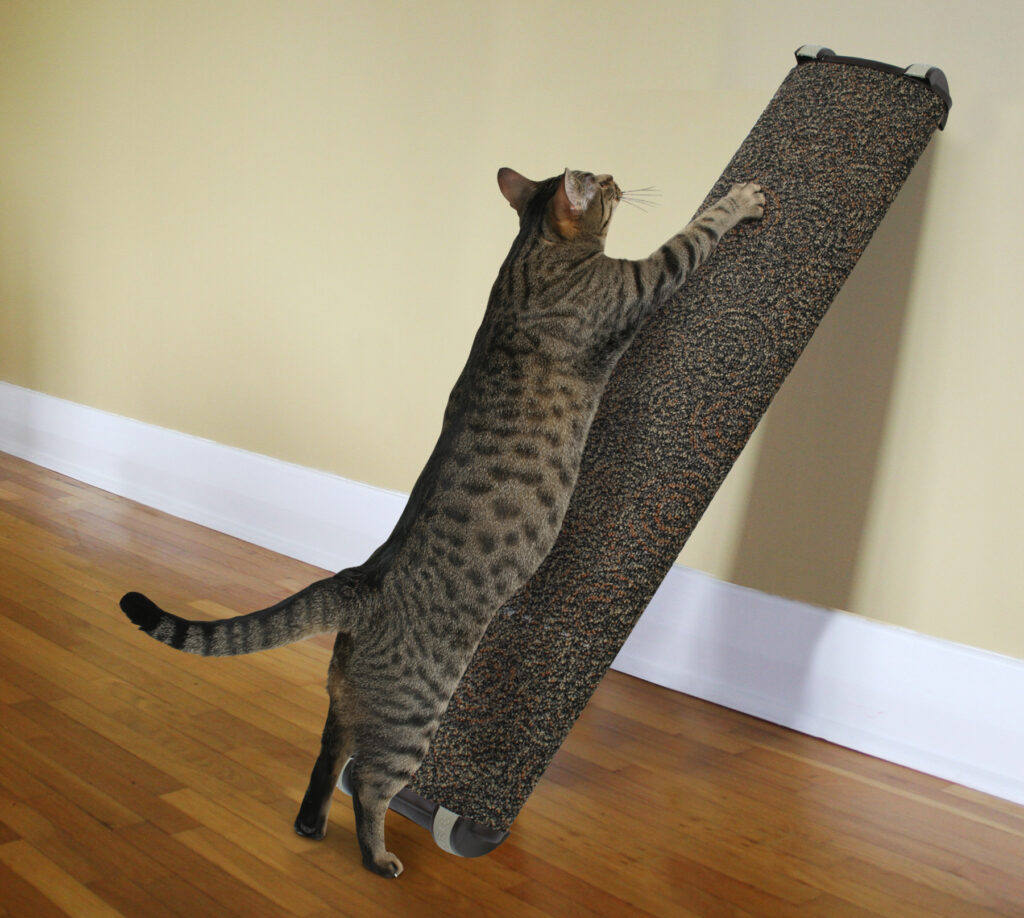 An image of Omega Paw Inc. – Wide Lean-it Scratch Post Large